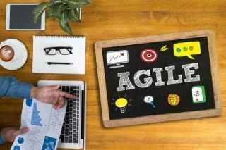 The State of Agile